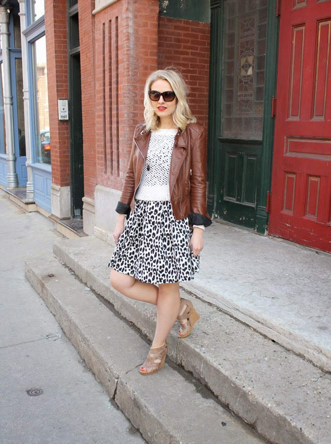 express leather jacket, sweater and dress, leopard print dress, aldo wedges, madewell sweater, asks dress