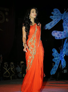 Shruti Hassan Photo in Saree