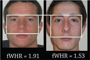 índice fWHR