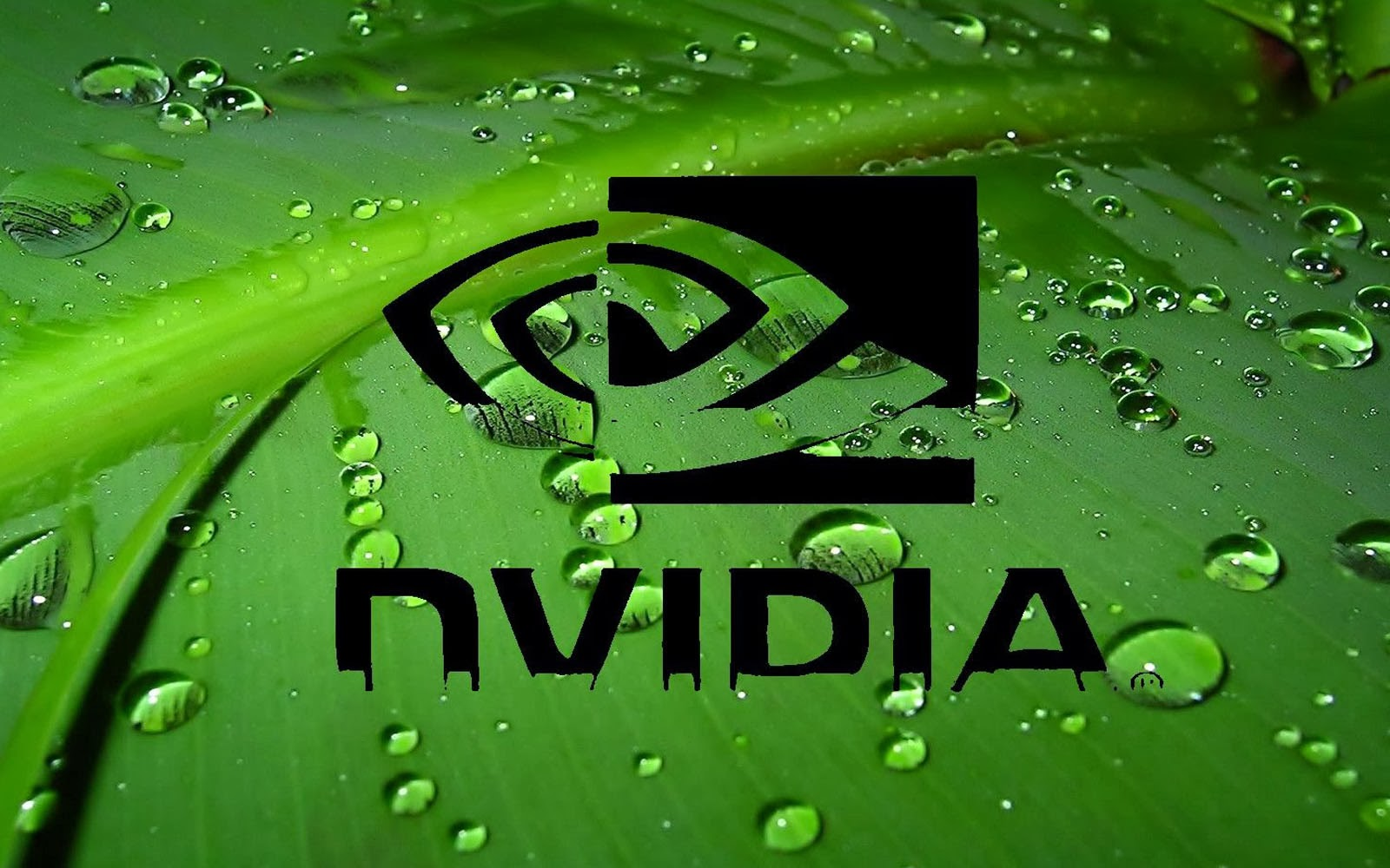 wallpapers: Nvidia Wallpapers - 223.5KB