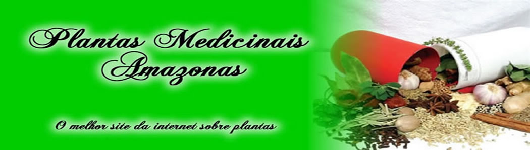 Plantas Medicinais, receitas caseiras ervas medicinais, cura pelas ervas, medicina alternativa..::