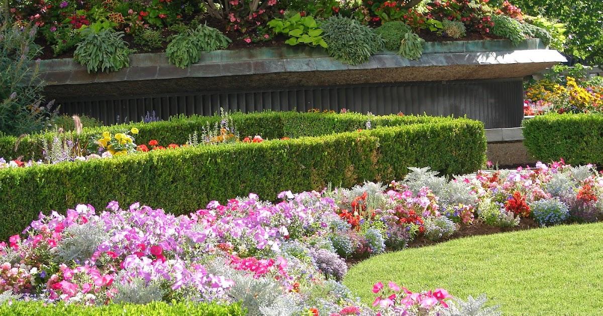New Utah Gardener: Annuals For Summer Color