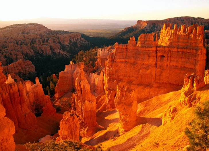 Eagar (AZ) United States  city photos gallery : The Grand Canyon | United States | World