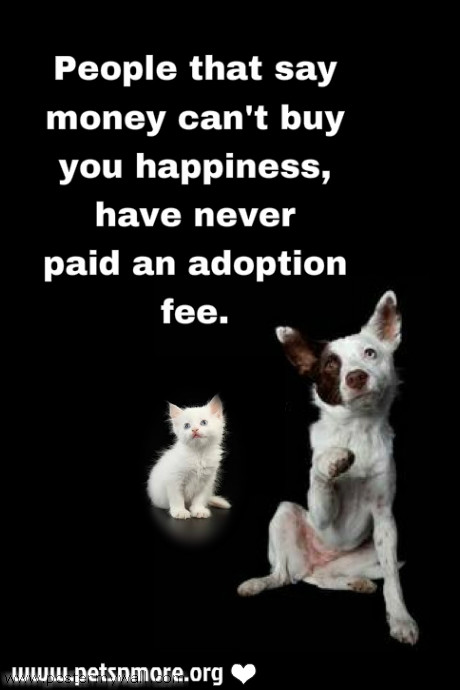 Animal Adoption Quotes And Sayings. QuotesGram