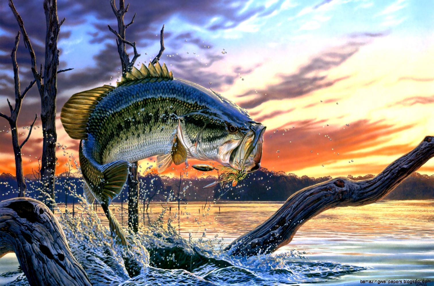 Bass Fishing Wallpaper For Iphone | Amazing Wallpapers