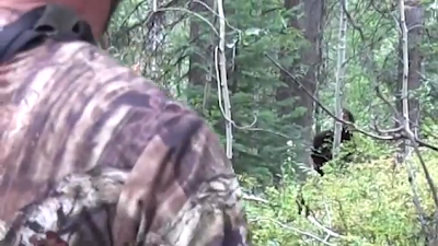 Hunters Film Bigfoot?