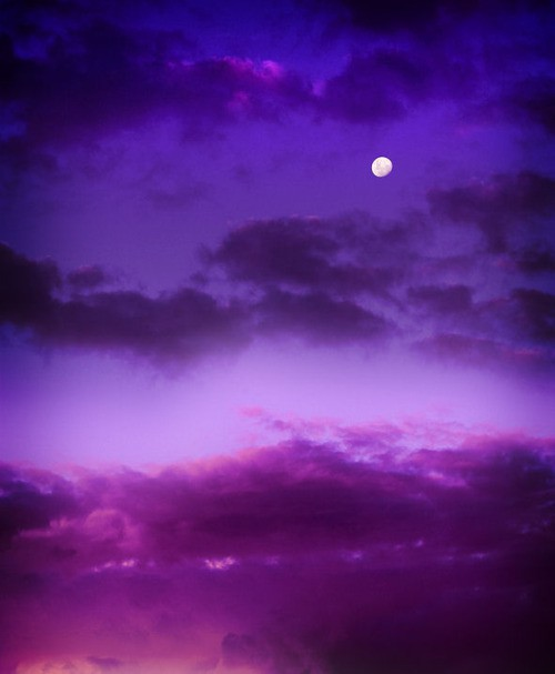 Dishfunctional Designs: Color Palette: Deep Purple, Blackberry, and Aubergine