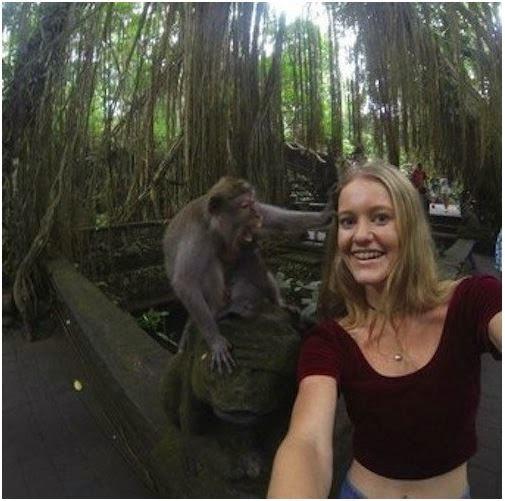 Con mono no te tomes SELFIES ! Puede salir muy mal !