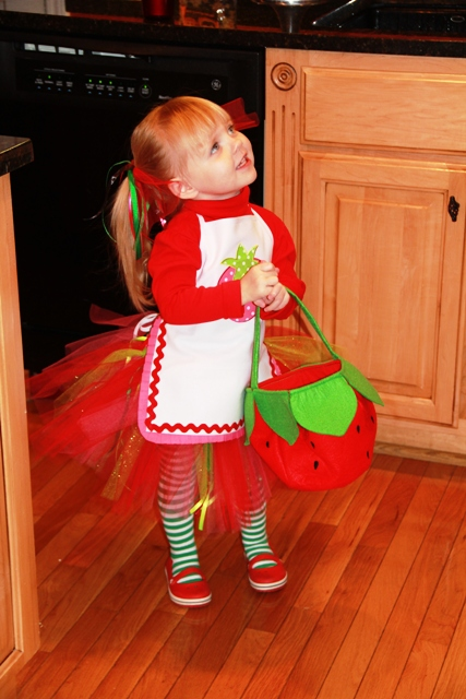 My little doodlebug is going to be Strawberry Shortcake for Halloween. This  all started when we got a happy meal late summer at MacDonald\u0027s and in it  was a