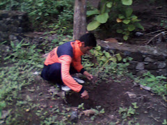 Cinta Alam