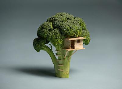 Brock Davis - broccoli treehouse