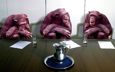 3 corporate monkeys in a meeting
