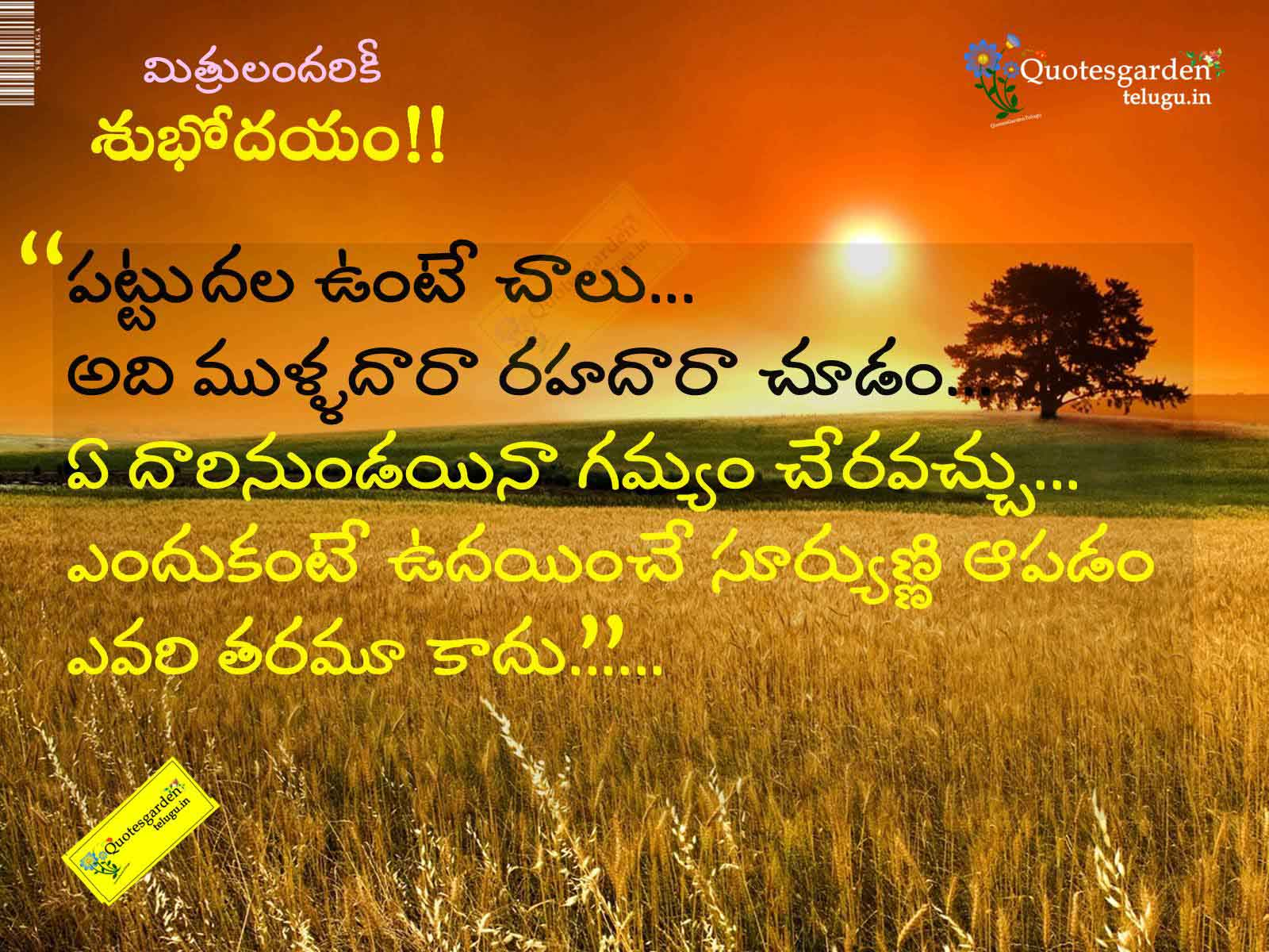 telugu good morning quotes and thoughts with nice cool