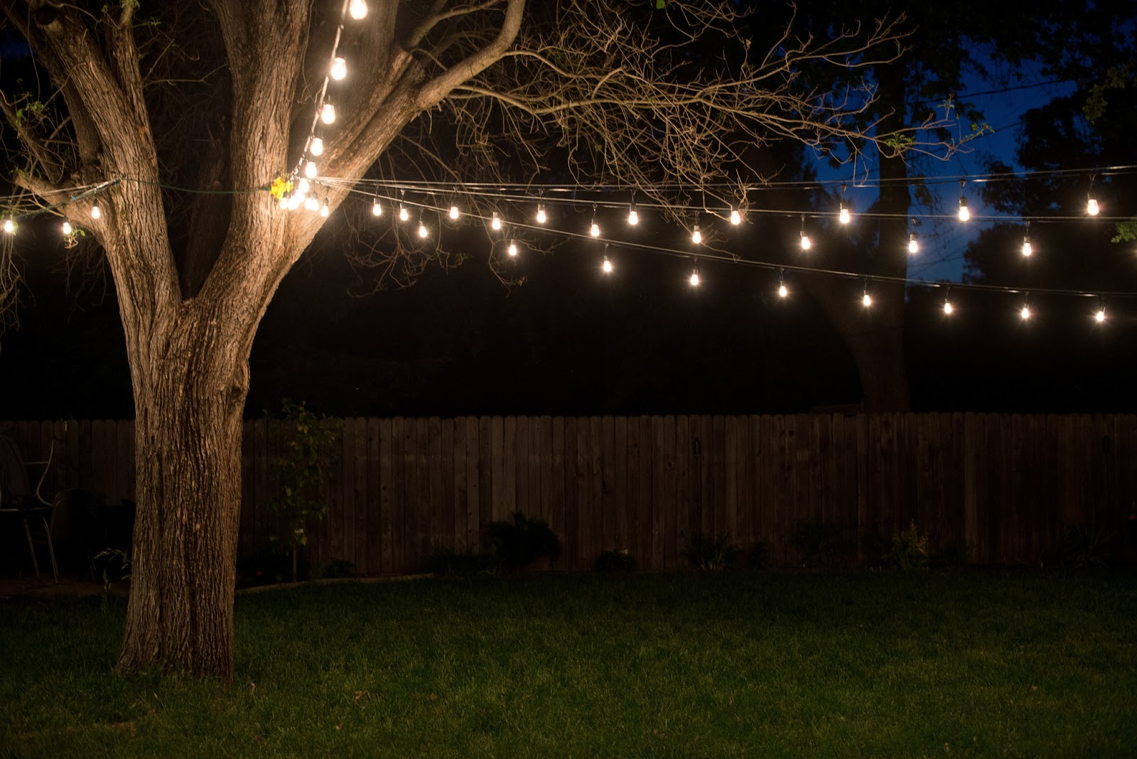 Outdoor string lights house ideals for How to hang string lights without trees