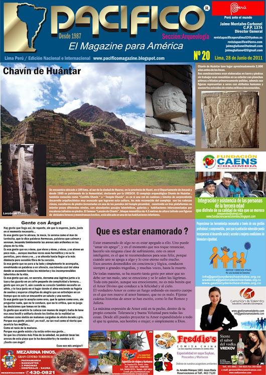 Revista Pacífico Nº 20 Arqueología