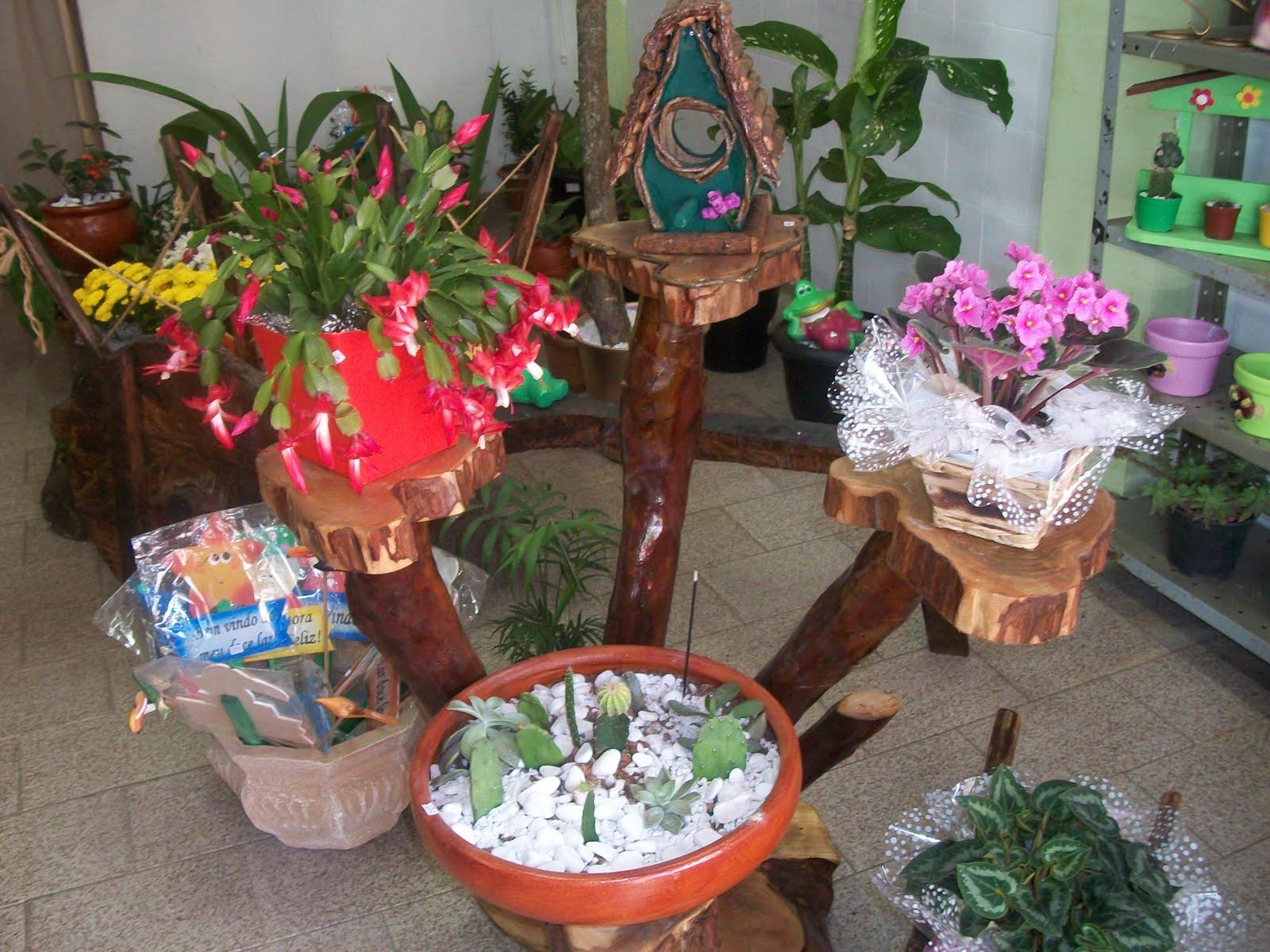 Lu Artes e Plantas suporte para plantas feito em tronco de arvore