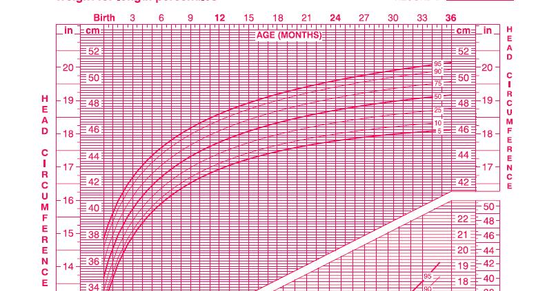 Girl Growth Chart Erkalnathandedecker