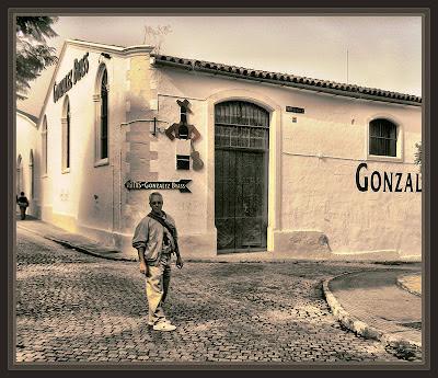 JEREZ DE LA FRONTERA-BODEGAS-GONZALEZ BYASS-VIAJES-FOTOS-PINTOR-ERNEST DESCALS-