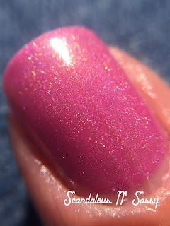 Bohemian Polish Don't Mind the Steam holo macro