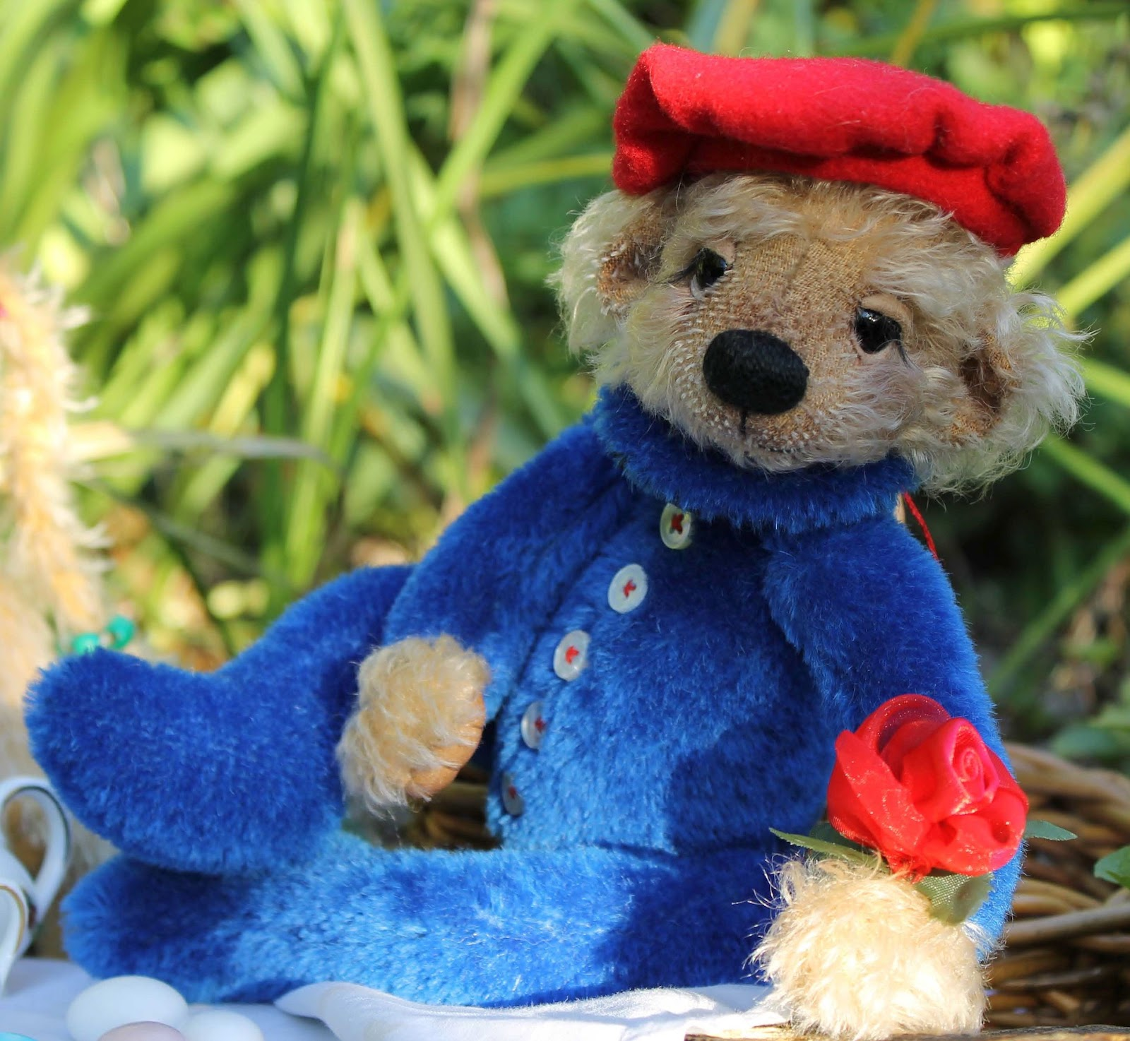 bear w4m bunbury