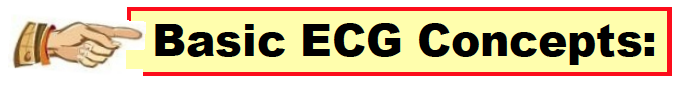Basic ECG Concepts