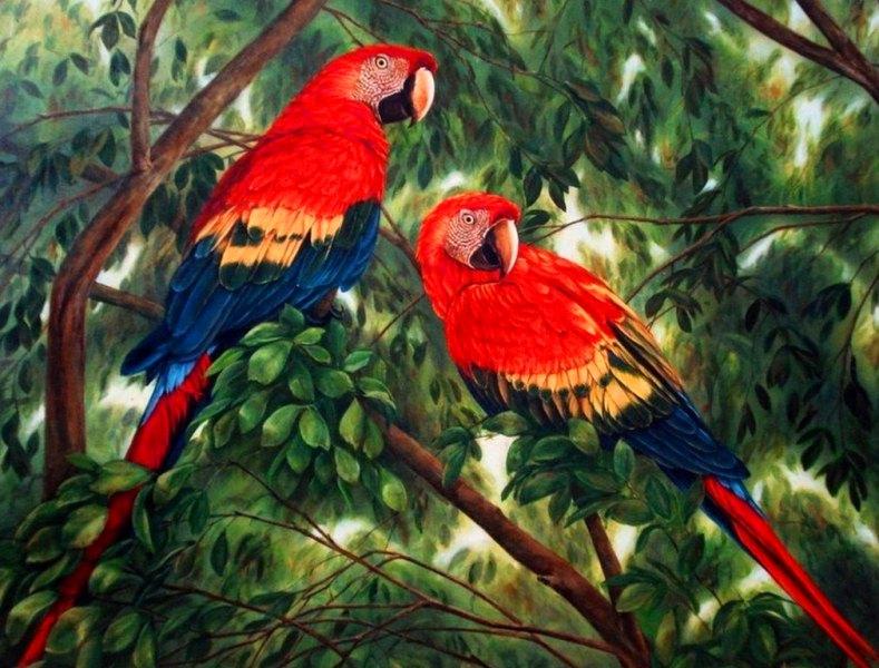 Paisajes con aves pinturas de paisajes con aves cuadros al - Imagenes para cuadros decorativos ...