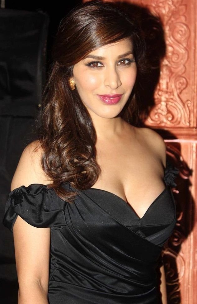 Sophie Choudry at Colors TV Party Stunning Backless Brown Gown