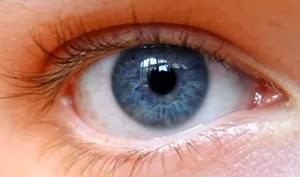 Perlunya Menjaga Kesehatan Bola Mata Kita - www.NetterKu.com : Menulis di Internet untuk saling berbagi Ilmu Pengetahuan!