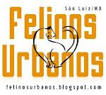Felinos Urbanos - Projeto de CAPTURA, ESTERILIZAÇÃO e DEVOLUÇÃO