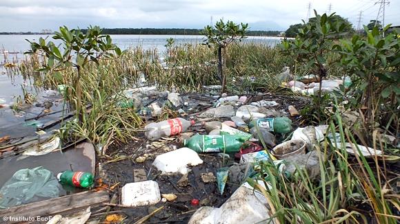 Garrafas PET, sacolas, embalagens, isopor... o manguezal mais parece um lixão.