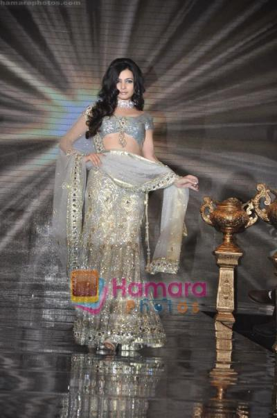 shonali nagrani in silver saree ramp walk - (3) - Shonali Nagrani Pics in Saree