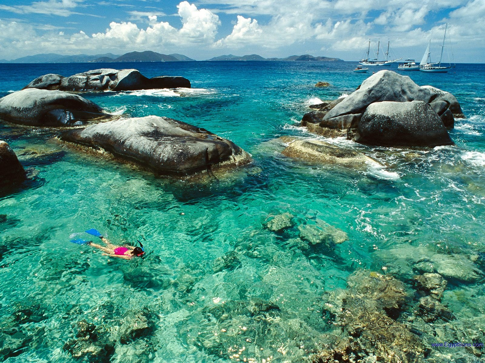 The British Virgin Islands NATURES LITTLE SECRETS