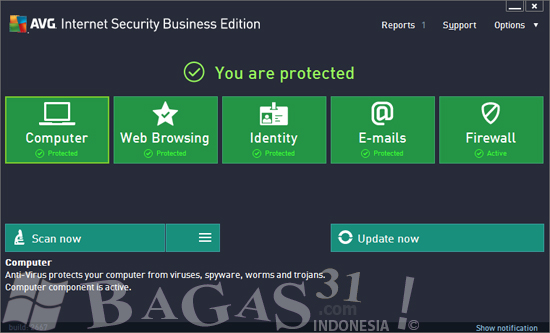 AVG Internet Security 2013 Business Edition Full Serial 2