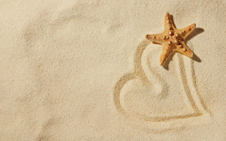 Starfish Beach Heart HD Wallpaper