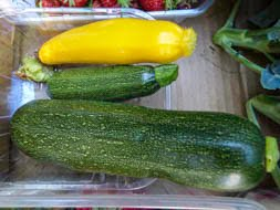 Ways to use courgettes