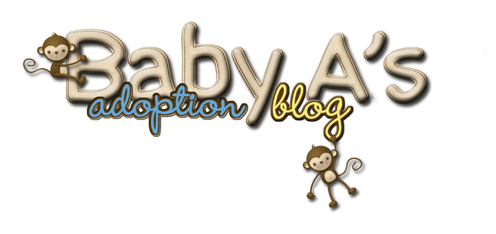 Baby A's Adoption Blog
