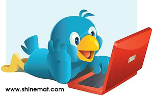 Twitter Bird With PC By ShineMat.com