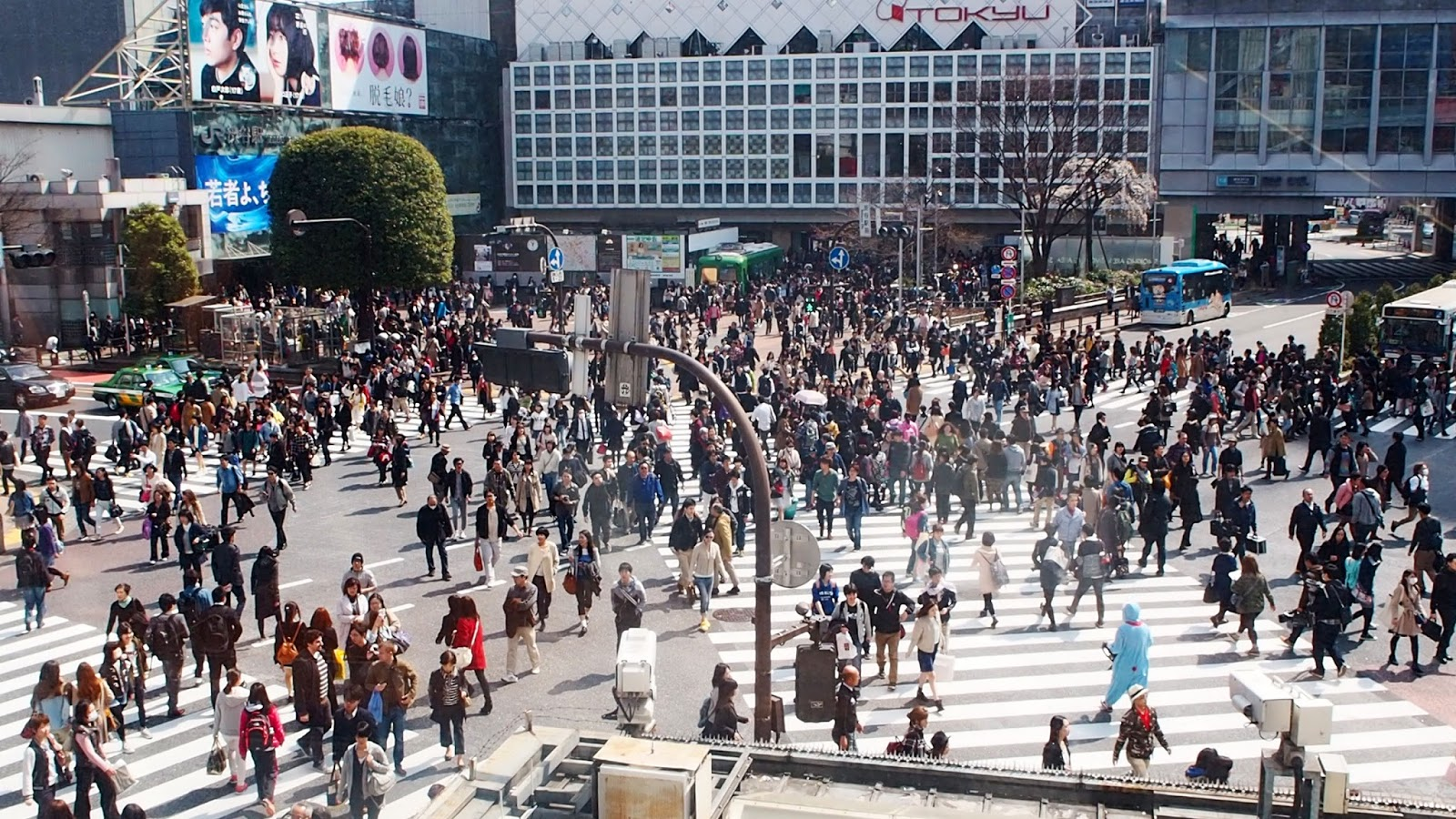 Walk Across the Busiest Crossing in the World - Shibuya