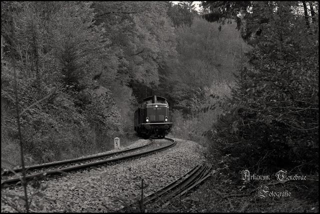die Wieslauftalbahn Diesellock