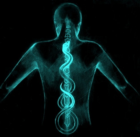 El poder oculto en tu propio cuerpo (Haz CLIC en la imagen)