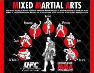 Mixed Martial Arts Poster