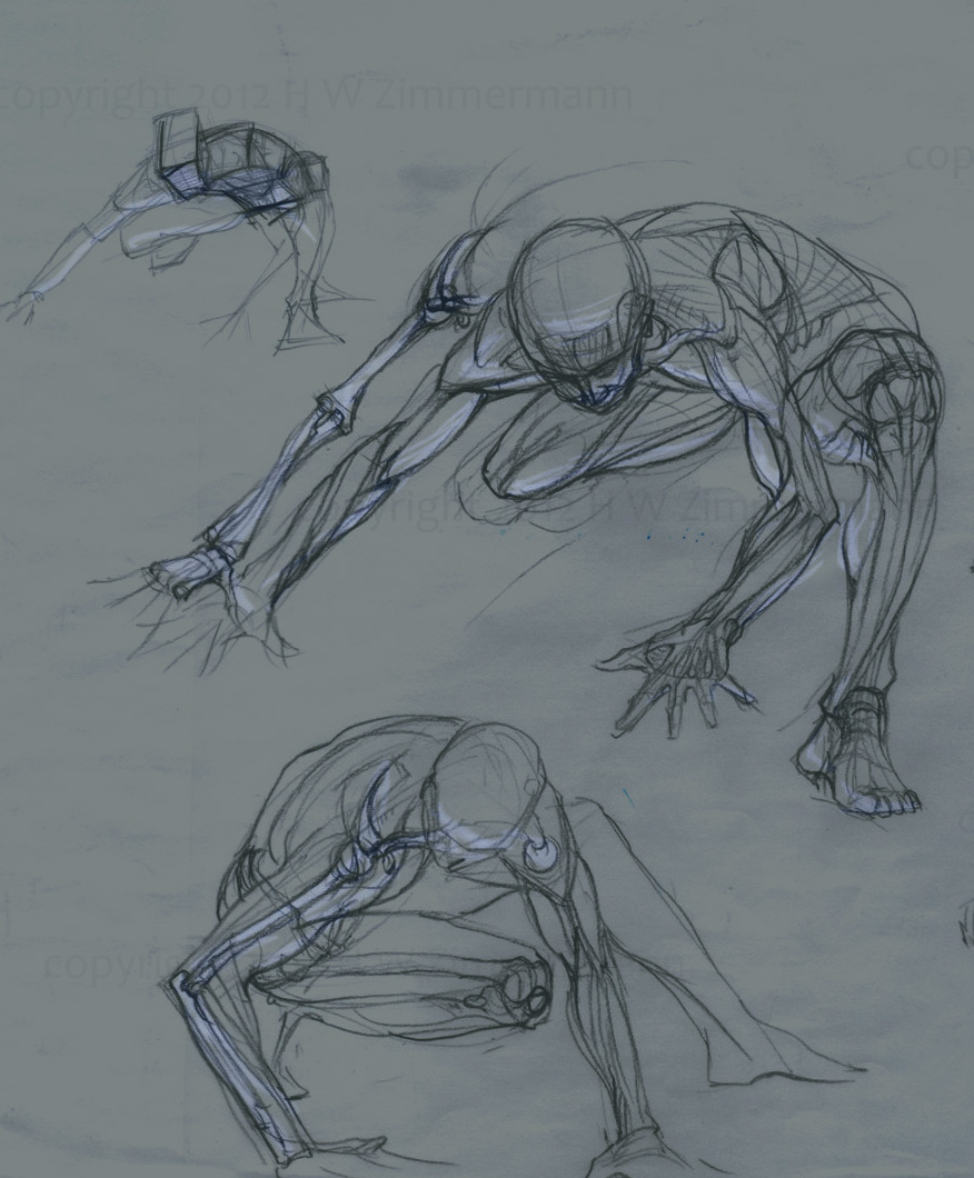 Man4art Course In Human Anatomy