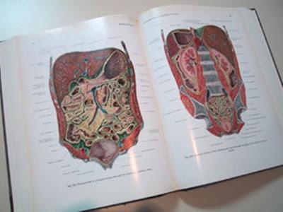 Rahasia Mengerikan Dibalik Pembuatan Buku Atlas Pernkopf