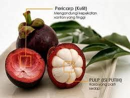 obat tradisional untuk kista bartholin