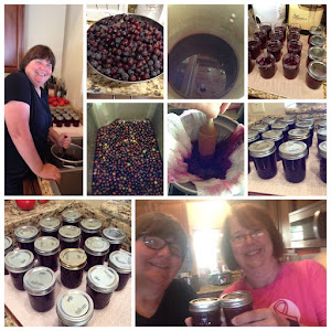 Making grape jelly!