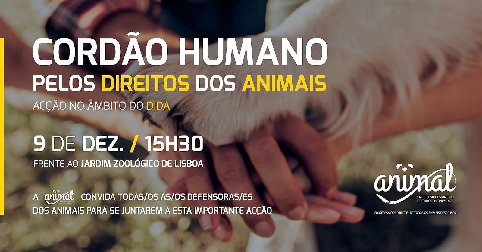 9 de dezembro, 15h30: Lisboa
