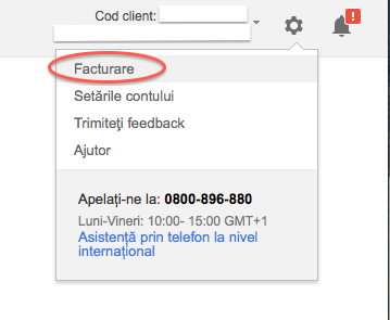 01-adwords-facturare