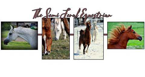 The Semi Feral Equestrian