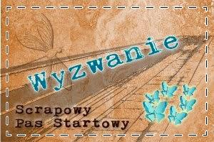 http://scrapowypasstartowy.blogspot.com/2014/04/mapkowo-kwietniowo-majowo.html