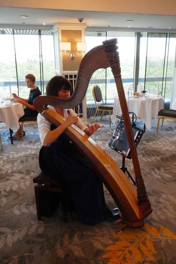 Hilton Munich Park harp